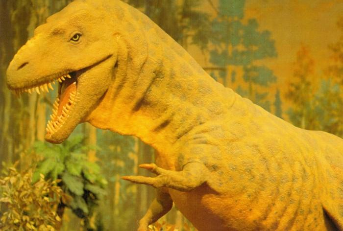Albertosaurus statue