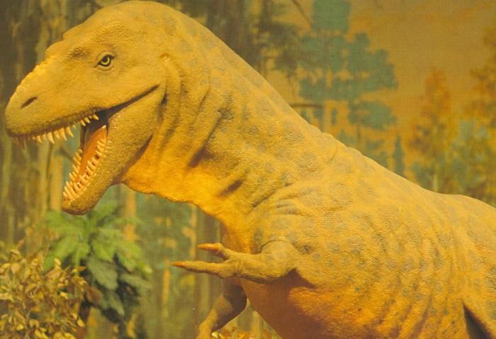 Albertosaurus-statue