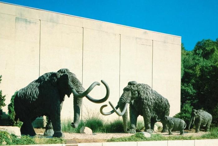 Cincinnati-Museum-mastodons-1000x6721-700x470