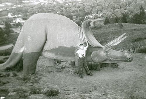 Dinosaur Park Triceratops
