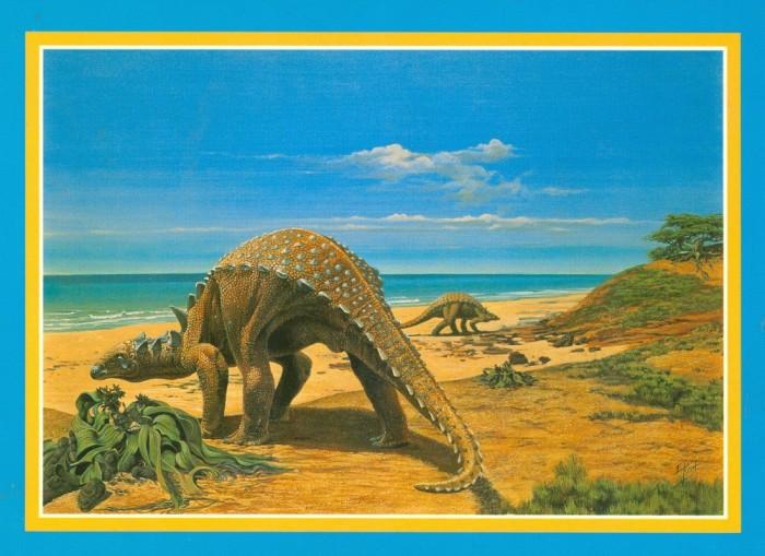 KIsh-Sauropelta-postcard
