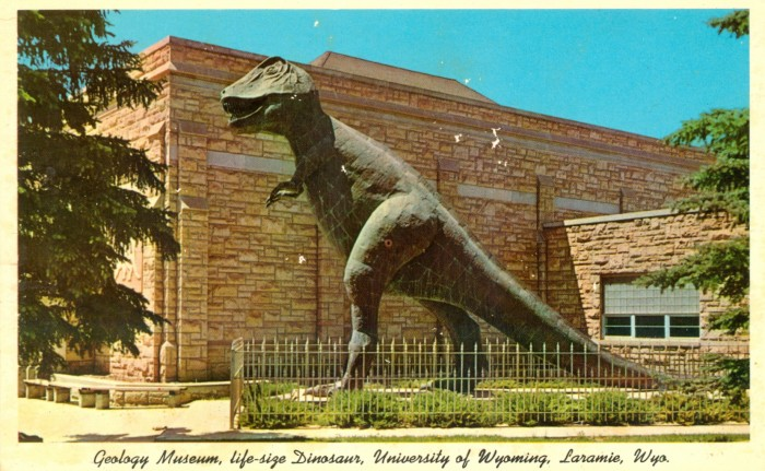 Laramie Tyrannosaurus