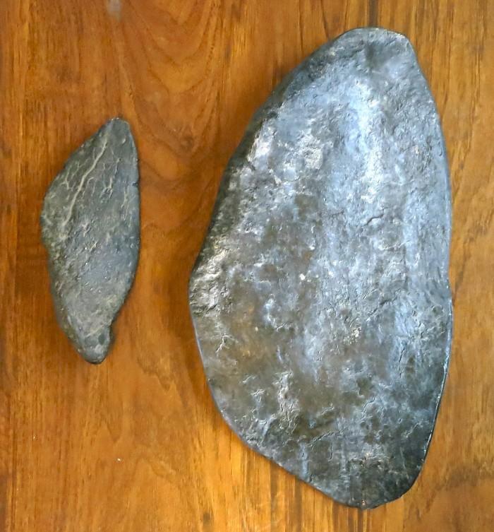Stegosaurus plates