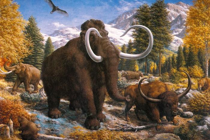 Zallinger mammoth