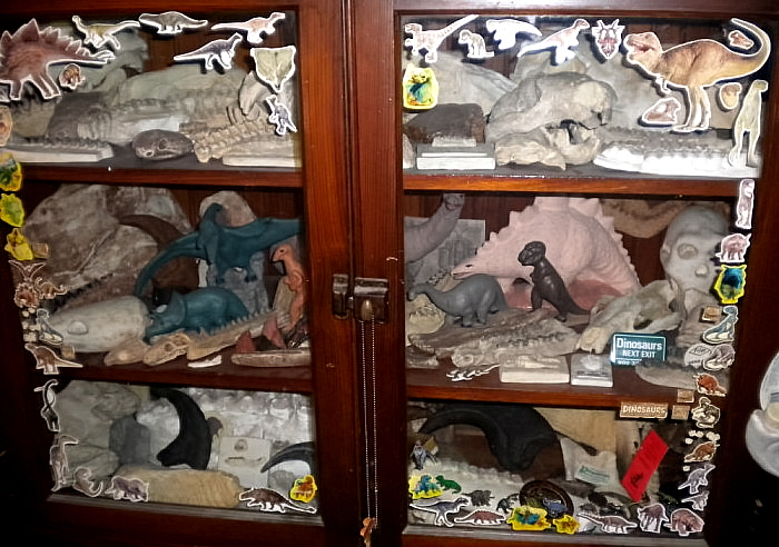 fossils cabinet