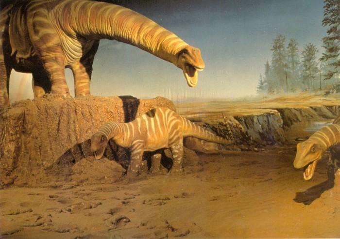 Dinamation Apatosaurus