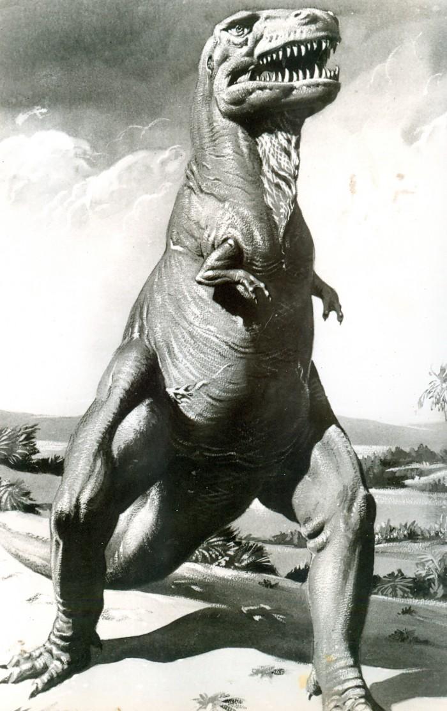 Parker Tyrannosaurus