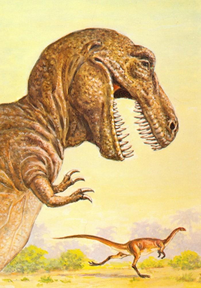 T. rex postcard