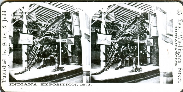 Megatherium5