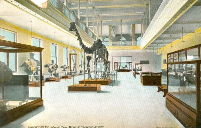 Carnegie Museum Diplodocus