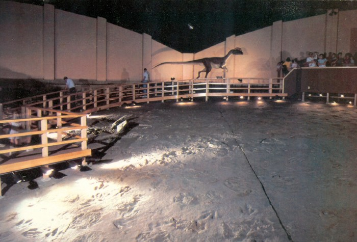 Dinosaur State Park tracks & Diliophosaurus