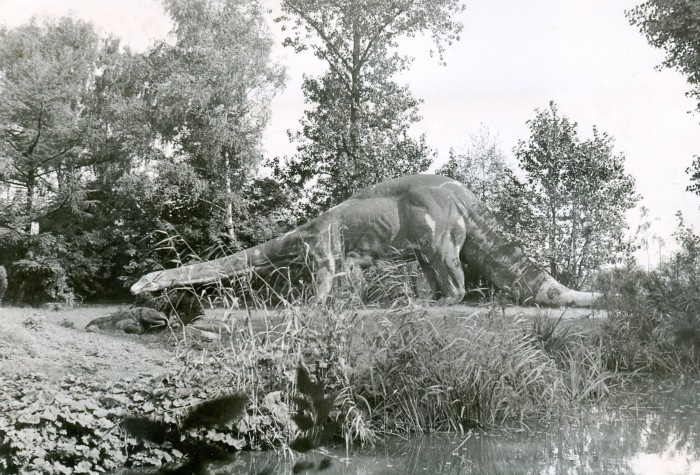 Pallenberg-Diplodocus-700x475