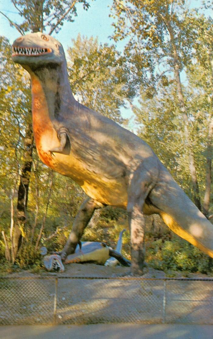 Gorgosaurus Calgary Zoo