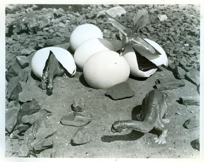 hatching dinosaurs