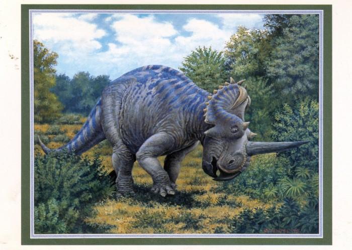 Centrosaurus-postcard
